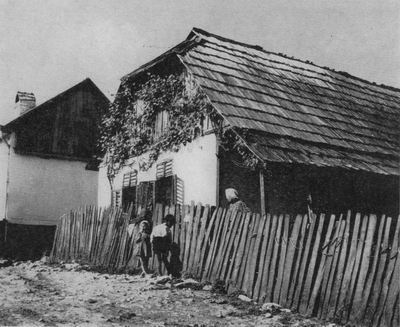 Obydlí českých osídlenců v Banátských horách (Gîrnic, Rumunsko). Foto R. Jeřábek 1971.